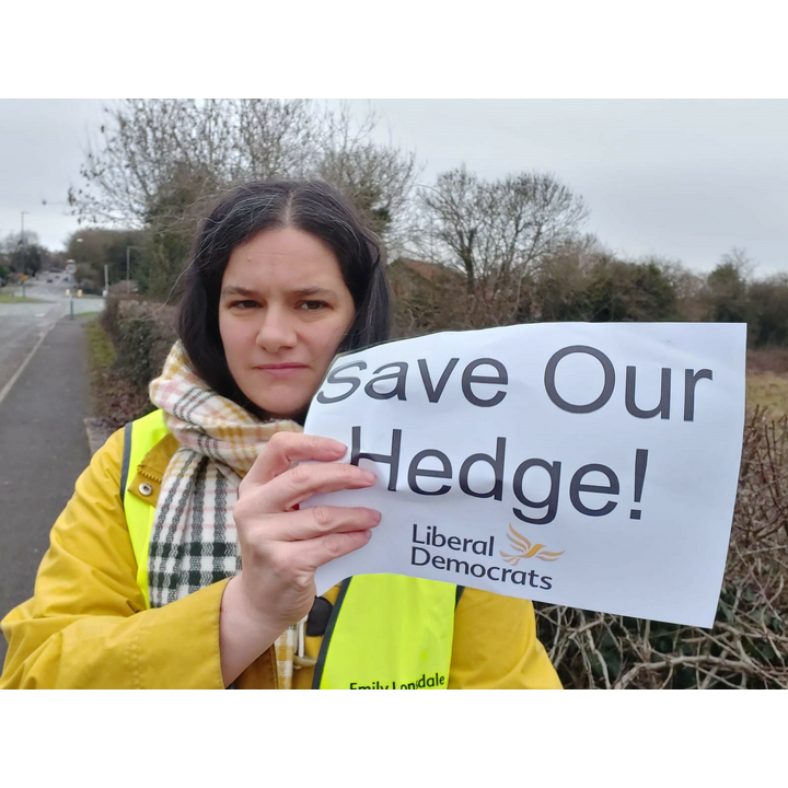Local campaigner Emily Lonsdale by the Rykneld Road hedge